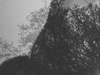 Das Sprungbrett – Gedicht
